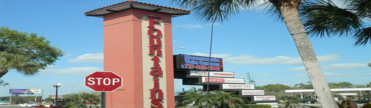 In Saint Petersburg, International Sign is ready to help you with your custom outdoor sign needs or requirements. International Sign specializes in the design, manufacture, installation of Monument Message Center Sign Addon in all of Pinellas county, International Sign is ready to serve your signs ft. meyers needs. Here to serve you International Sign does business in Saint Petersburg in Pinellas county FL. Area codes we service include the  area code and the 